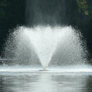 фото Как ухаживать за фонтаном: правила и рекомендации
