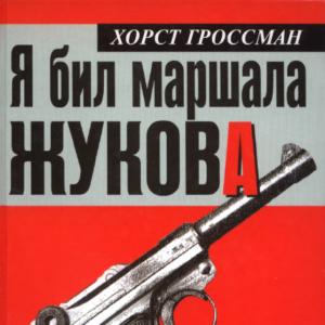 скачать книгу Я бил маршала Жукова. Ржевский кошмар