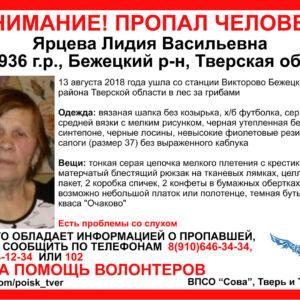 фото В Тверской области продолжаются поиски заблудившейся в лесу женщины