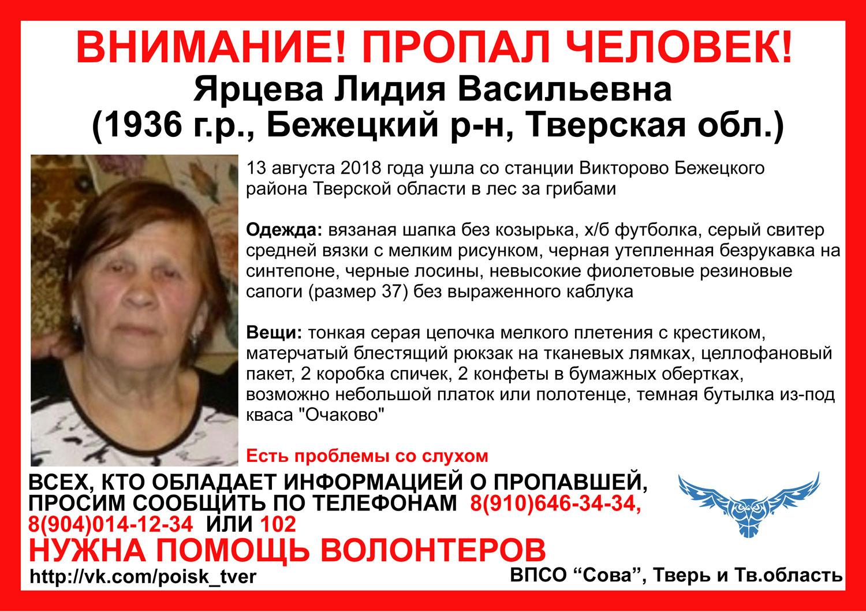 В Тверской области продолжаются поиски заблудившейся в лесу женщины