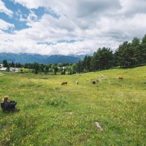фото 37% жителей Твери мечтают жить в окружении природы, а не мегаполиса