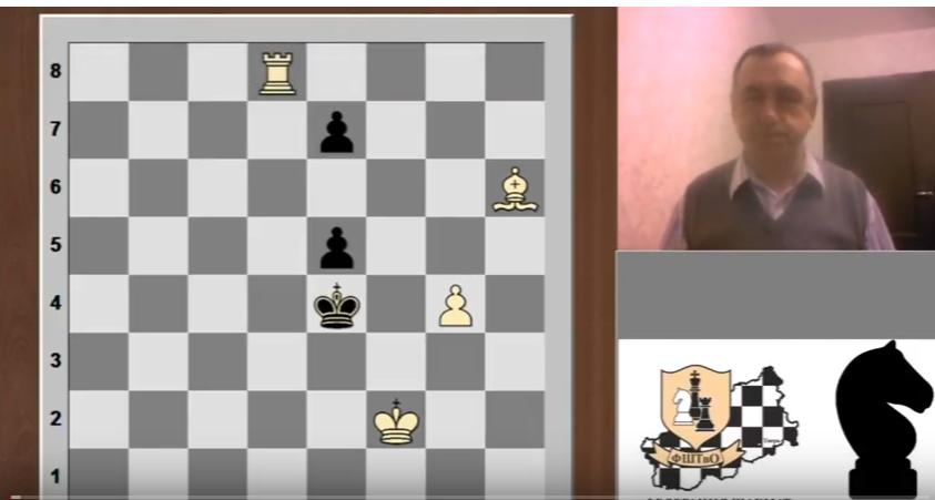 Тверские эксперты рассказали россиянам о шахматной композиции