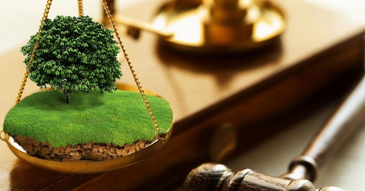Более 4,7 миллиона рублей взыскано в тверском регионе с нарушителей земельного законодательства в 1 полугодии 2019 года
