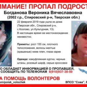 фото По факту пропажи Вероники Богдановой заведено уголовное дело