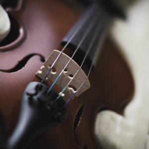 фото Тверичей приглашают послушать скрипичные хиты