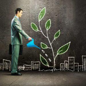 фото В Твери пройдет семинар на тему поддержки социального предпринимательства