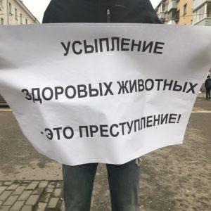 """фото Тверь присоединилась к акции """"Закон должен работать - живодер сидеть в тюрьме"""""""