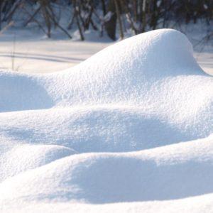 """фото В Твери пройдет выставка живописи и графики """"Пришла пора зимы"""""""