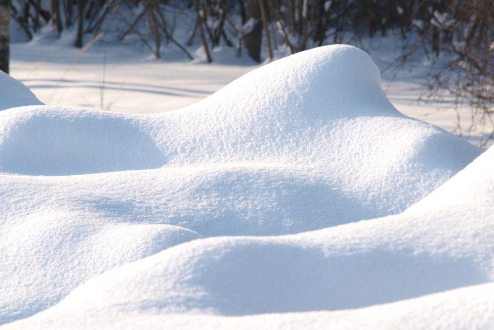 """В Твери пройдет выставка живописи и графики """"Пришла пора зимы"""""""