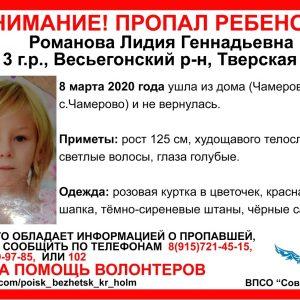 фото В Тверской глубинке пропала 7-летняя девочка