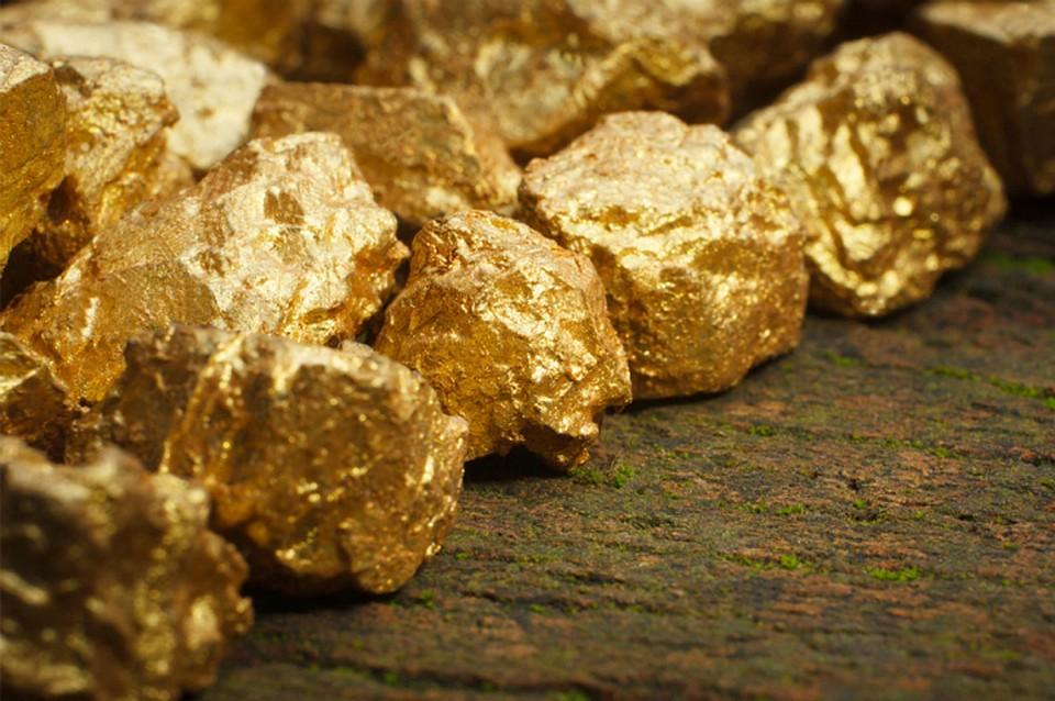 Суды останавливают лихорадку в золотодобывающей отрасли
