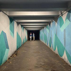 фото В Твери урбанисты осветили тоннель под Старым Волжским Мостом